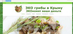 """АМТ """"ПИАРТ """" создание сайтов в Крыму"""
